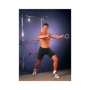 Lifeline Wall Gym 4000