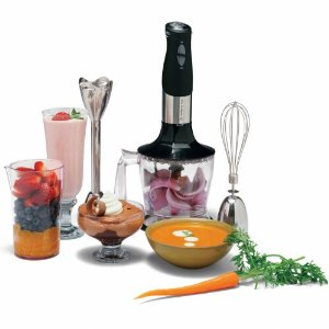 Wolfgang Puck Immersion Blender