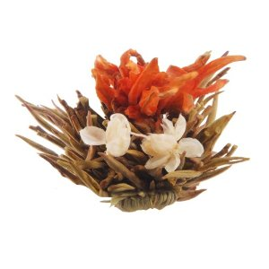Primula 12-Pack Flowering White Tea with Peppermint