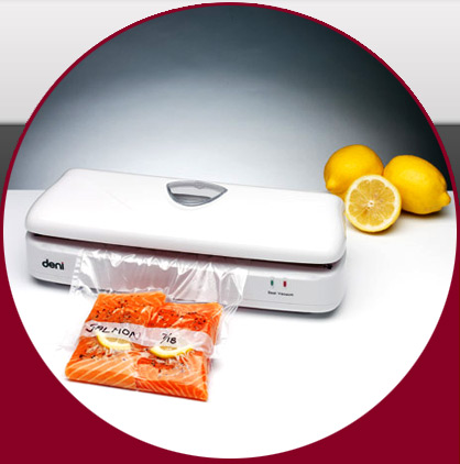 Deni 1331 freshlock vacuum sealer 1wire