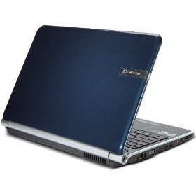 Gateway NV5386u 15.6-Inch Laptop (Blue)