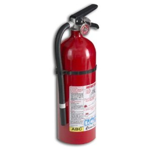 Kidde 21005779 Pro 210 Fire Extinguisher, ABC, 160CI