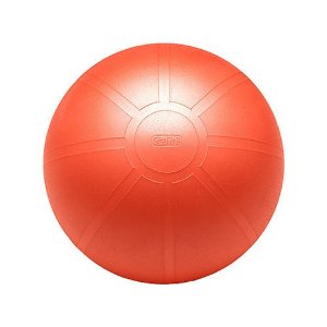 GoFit Ultimate Burst Resistant Core Stability Ball with Workout DVD (55 cm)