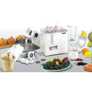 220 Volt Nikai Japan 10 In 1 Food Processor