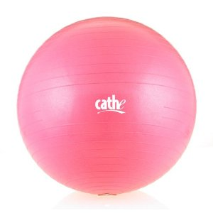 Fitness by Cathe 55cm 1000-Pound Anti-Burst Body Ball with DVD (Pink)