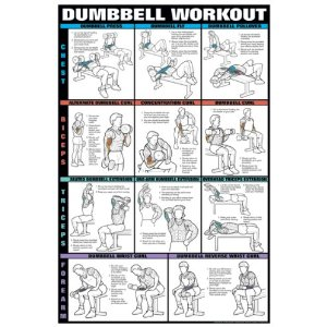 Dumbell Workout I 24