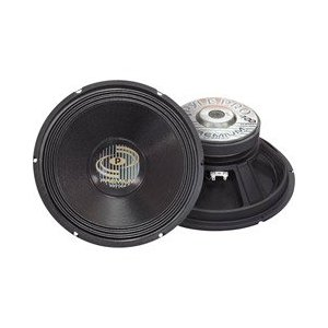 PYLE PPA-12 Professional Premium Pa Woofer