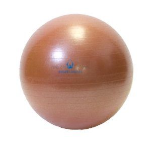 Natural Fitness 65cm Professional Burst-Resistant Exercise Ball (Red Rock)