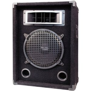 Pyramid PMBH1039 300-Watt 2-Way 10'' Speaker Cabinet