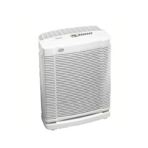 19' x 21' Room Air Purifier
