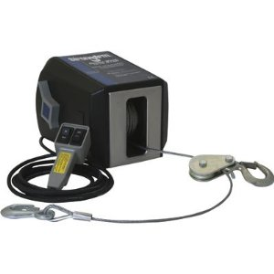 Dutton-Lainson StrongArm 120V AC Electric Winch with Remote Control - 4000-Lb. Capacity, Model# 25046