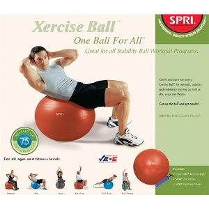SPRI 1B4ALL-75 One-Ball-For-All Kit with 75-Centimeter Ball, Pump and Exercise Chart