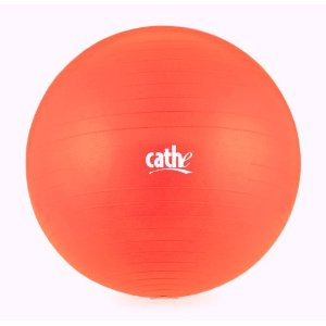Fitness by Cathe 55cm 1000-Pound Anti-Burst Body Ball with DVD (Cherry Red)