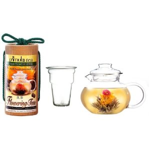 Primula Flowering Tea Set with 40-Ounce Pot with Glass Lid
