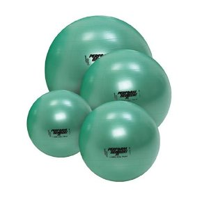 Gymnic Stability Ball Plus w/ Free Exercise Cd-rom