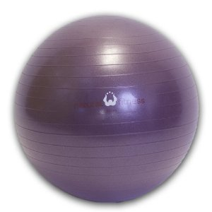 Natural Fitness 55cm Burst-Resistant Exercise Ball (Plum)