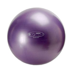 FitBall Exercise Ball 55 CM Purple