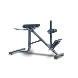 Powertec Fitness P-HC10 45-Degree Dual Hyperextension / Roman Chair