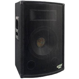 Pyle-Pro PADH1579 - 800 Watt 15'' Two-Way Speaker Cabinet