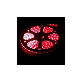 10 foot section of red 12 volt 1/2 inch led rope light