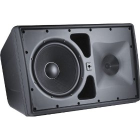 JBL Control 30 Three-Way Indoor/Outdoor Speaker, Black