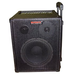 Nady RPA-2 Two Channel One Piece Portable Sound System, 65 Watts