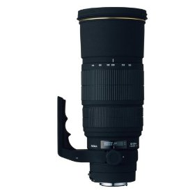 Sigma 120-300mm f/2.8 EX DG IF HSM APO Telephoto Zoom Lens for Nikon SLR Cameras