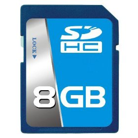 Professional Intel SD SDHC 8GB (8 Gigabyte) Memory Card for Nikon Coolpix L3 L6 L10 L11 L12 L15 L16 L18 L19 L20 L22 L100 L110 with custom formatting